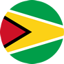 guyana-flag-round-medium